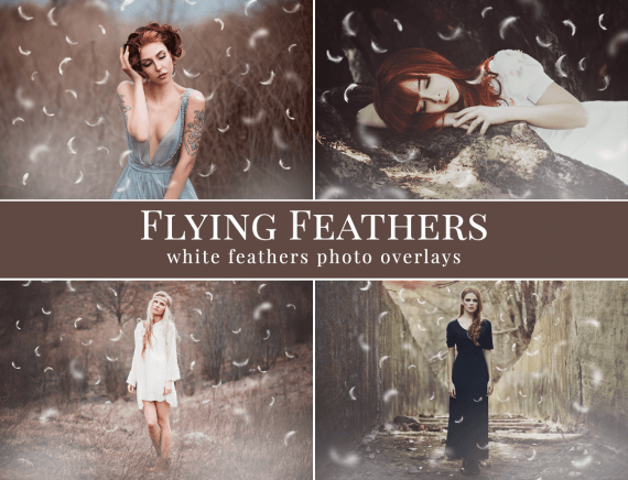 feathers photo overlays