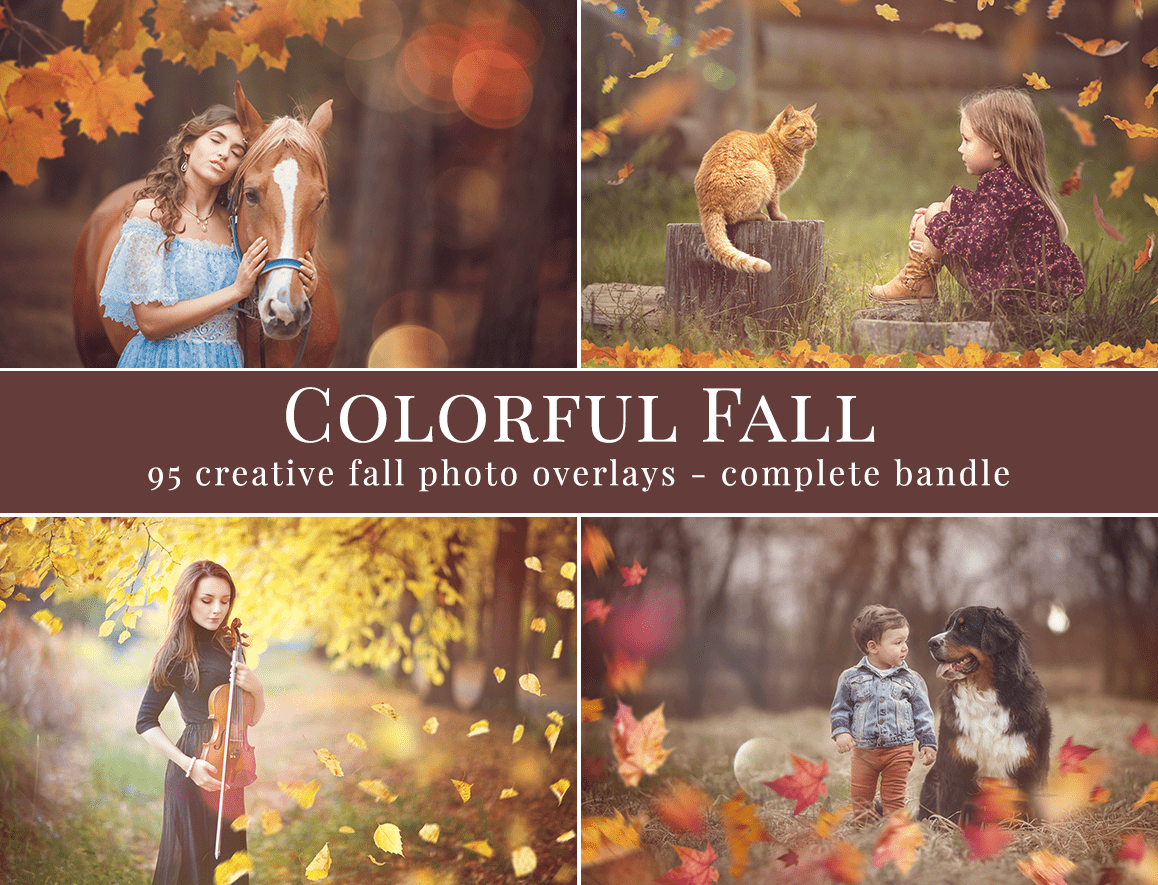 Colorful fall foto overlays